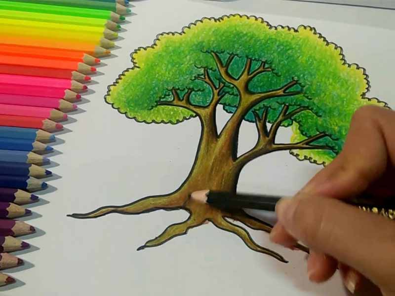 วิธีการไล่สีไม้อย่างโปรที่ใครๆก็ทำได้